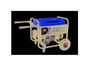 RGR50023020 4,900 Watt Commercial Portable Generator (CARB)
