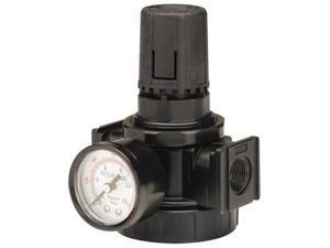 PA210100AV 3/8 in. NPT Commercial Pressure Regulator with Gauge