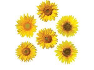 Bulletin Board Accents, Sunflowers