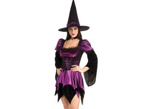 Wicked Enchanted Witch Costume