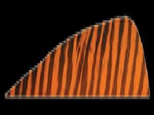 Gateway Feather 5 Rw Orange Barred Feathers