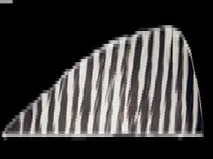 Gateway Feather 4 Rw White Barred Feathers