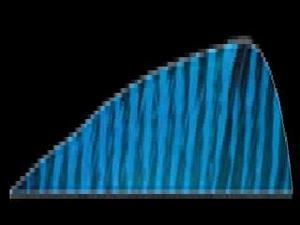 Gateway Feather 5 Rw Blue Barred Feathers