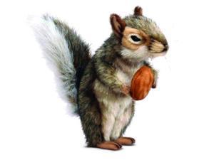 "Gray Squirrel 7.87"" by Hansa"