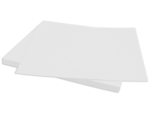 "Bazzill Cardstock 12""X12""-White/Classic"