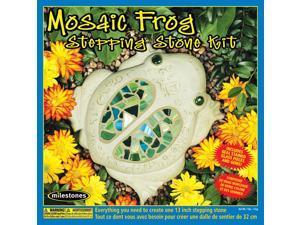 Mosaic Frog Stone Kit-