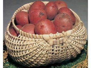 """Blue Ridge Basket Kits-Potato Basket 7""""X12""""X12"""""""