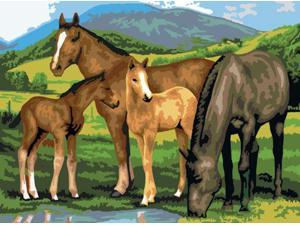"Junior Large Paint By Number Kit 15.25""X11.25""-Horse & Foals"