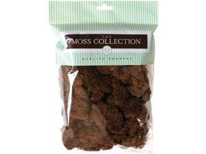 Preserved Reindeer Moss 108.5 Cubic Inches-Walnut