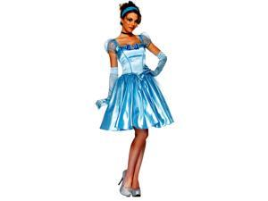 Cinderella Adult Costume - Large