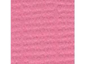 "Bazzill Cardstock 8.5""X11""-Piglet/Grass Cloth"