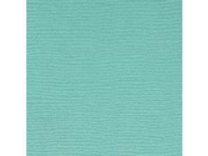 "Bazzill Cardstock 8.5""X11""-Whirlpool/Grass Cloth"