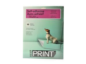 Chartpak BestPrint Presentation Media for Laser Printers & Copiers matte 10 sheets