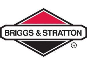 BRIGGS AND STRATTON 798653 CARBURETOR