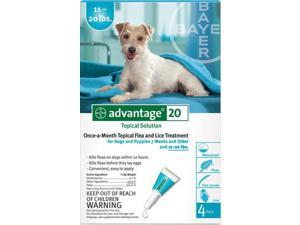 Advantage TEAL-20-4 4 month supply of Advantage