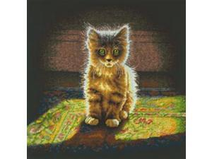 """Warm And Fuzzy Kitten Counted Cross Stitch Kit-12""""X12"""" 14 Count"""