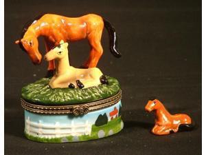 Horse Pony Colt Mare Pasture Lovers Trinket Box phb New