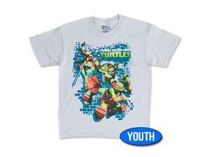 Teenage Mutant Ninja Turtles Jump Down Youth Boys 8-20 Tee Shirt - Gray