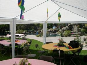 Palm Springs Outdoor 10 x 20 Wedding Party Tent Canopy with Sidewalls