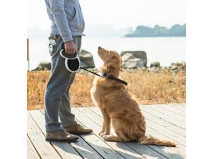 Esky Retractable Dog Leash with Ergonomic Handle