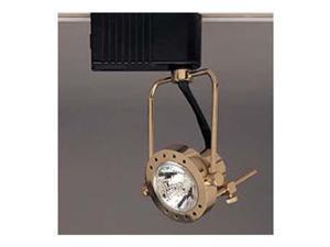 PLC Lighting Sport Track Lighting 1 Light / Polished Brass - TR611-PB
