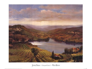 Vineyard View I Poster Print by Jennie Tomao (31 x 26)