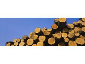 Stack of wooden logs in a timber industry, Austria Poster Print by Panoramic Images (36 x 12)