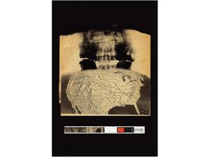 Radiohead - Amnesiac Poster Print (24 X 36)