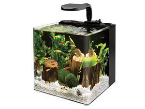 Evolve Aquarium for Fish and Aquatic,  Size: 4 GALLON