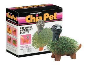 Chia Dinosaur