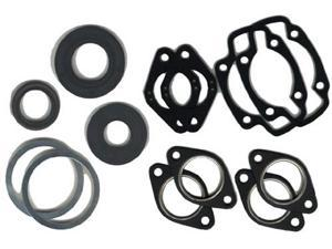 PROFESSIONAL GASKET SET WITH OI L SEALS