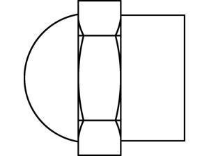 WHEELMASTER W6E902320 20PK VALVE CAP NICKEL PLA
