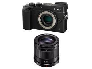Panasonic Lumix DMC-GX8 Mirrorless Micro Four Thirds Digital Camera Bundle