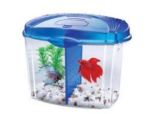 Aqueon 01206 Betta Bowl Starter Kit AQ01206 AQUEON