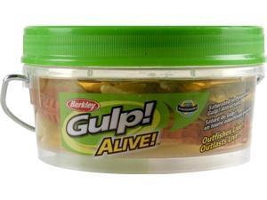 "Berkley GAPSHR3-AST1 Gulp Alive3"" Shrimp Asst-Bkt Fishing Prepared Bait"