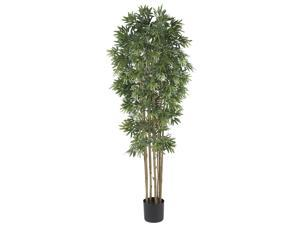 6' Bamboo Japanica Silk Tree