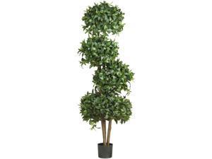 69 in. Sweet Bay Topiary w 4 Balls Silk Tree