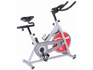 Indoor Cycling Bike in Silver Finish