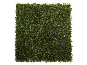 Boxwood Mat in Green - Set of 12