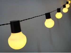 Electrical 20 LED Lights Chain in Black