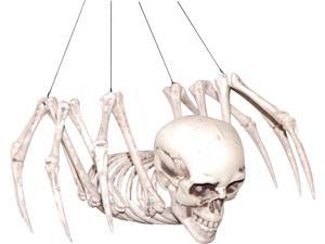 Spider Skeleton