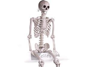 Forum Large Posable Skeleton Halloween Decoration 5ft Prop, White