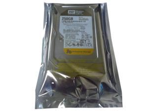 "Western Digital WD2503ABYX 250GB 7200RPM 3.5"" SATA2 Hard Drive"