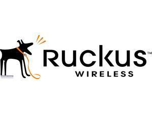 Ruckus Wireless - 901-P300-US01 - P300 Outdoor 802.11ac Bridge Single Unit