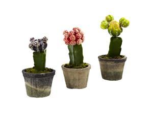 Nearly Natural Colourful Cactus Set of Three