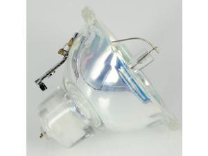 DLT EC.J0300.001 Projector Compatible Bare Bulb/Lamp for ACER PD113