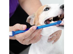 Dog Toothbrush Set