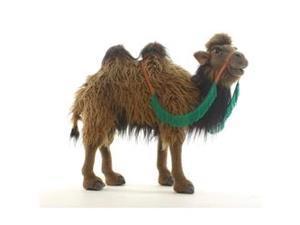 Hansa Bactrian Camel