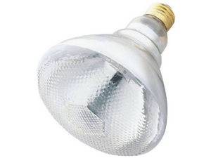 Westinghouse, True Value, 04440-54, 75BR38/FL, 75 Watt, 120 Volt, Incandescent, Outdoor, Security Reflector, Light Bulb