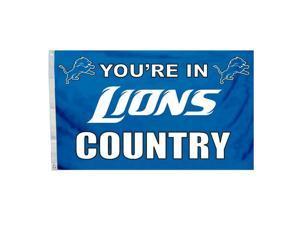 Detroit Lions 3 x 5 Grommet Flag